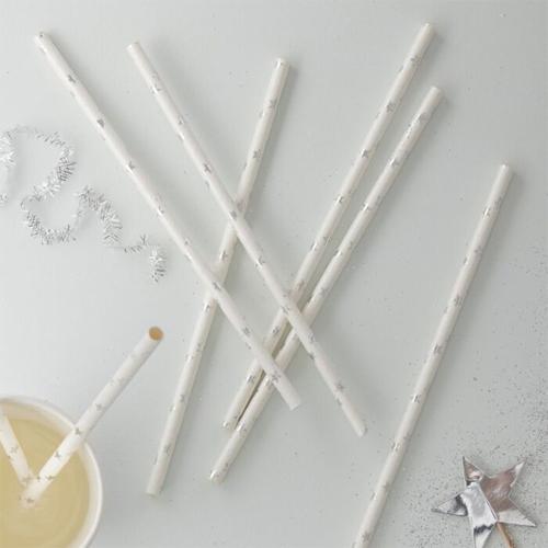 Ginger Ray Paper Straws - Strohhalm Silver Stars