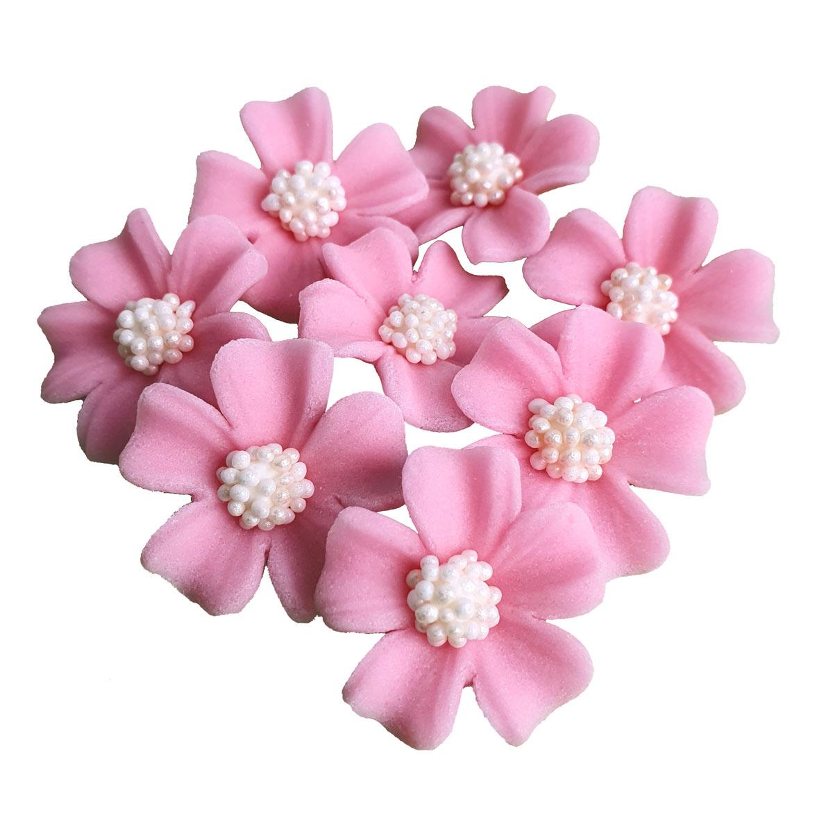 Zuckerblumen Vergissmeinnicht 8 Stück - Rosa