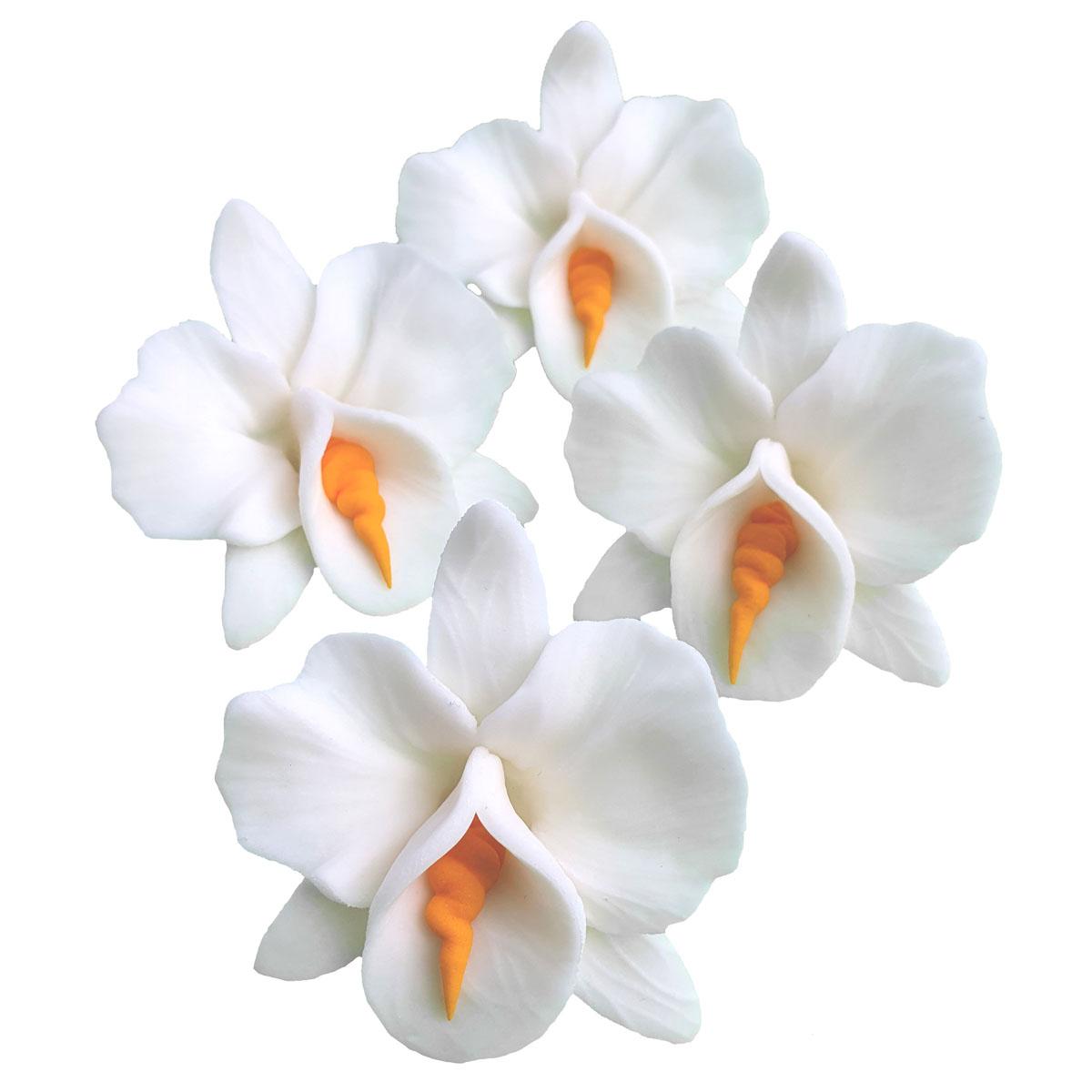 Zuckerblumen Orchidee 4 Stück - Weiss