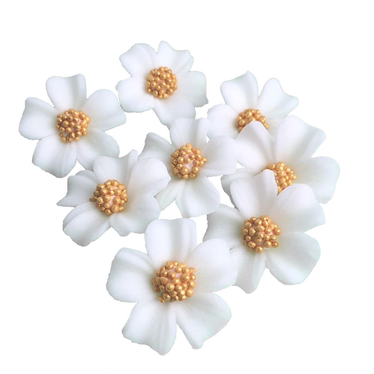 Zuckerblumen Vergissmeinnicht 8 Stück - Weiss / Gold