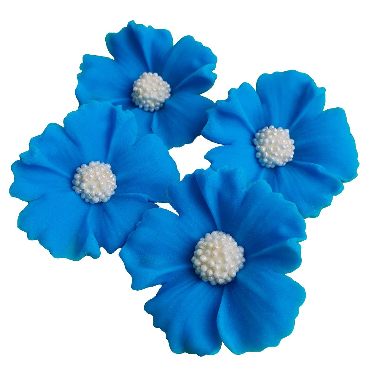 Zuckerblumen Kornblume 4 Stück - Blau