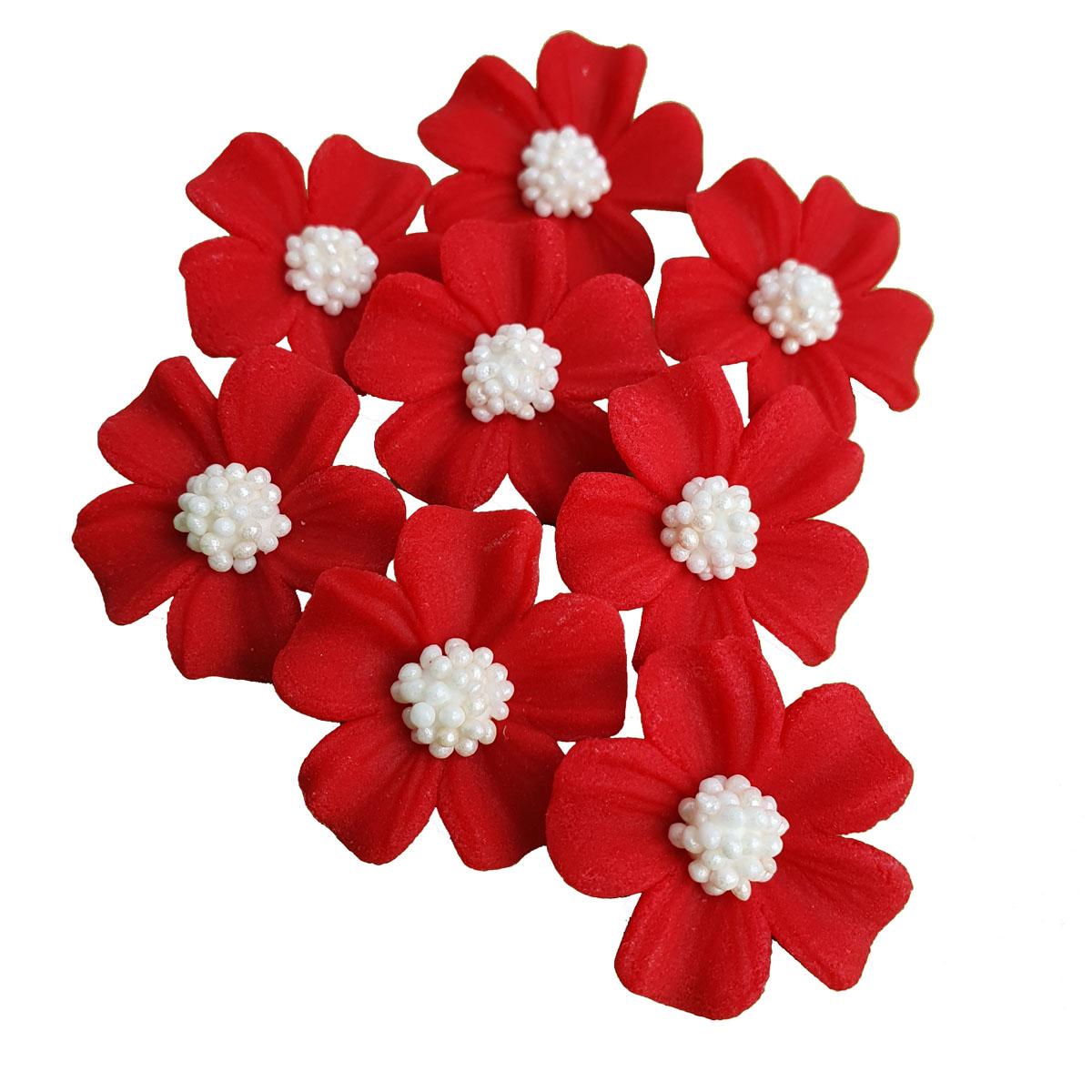 Zuckerblumen Vergissmeinnicht 8 Stück - Rot