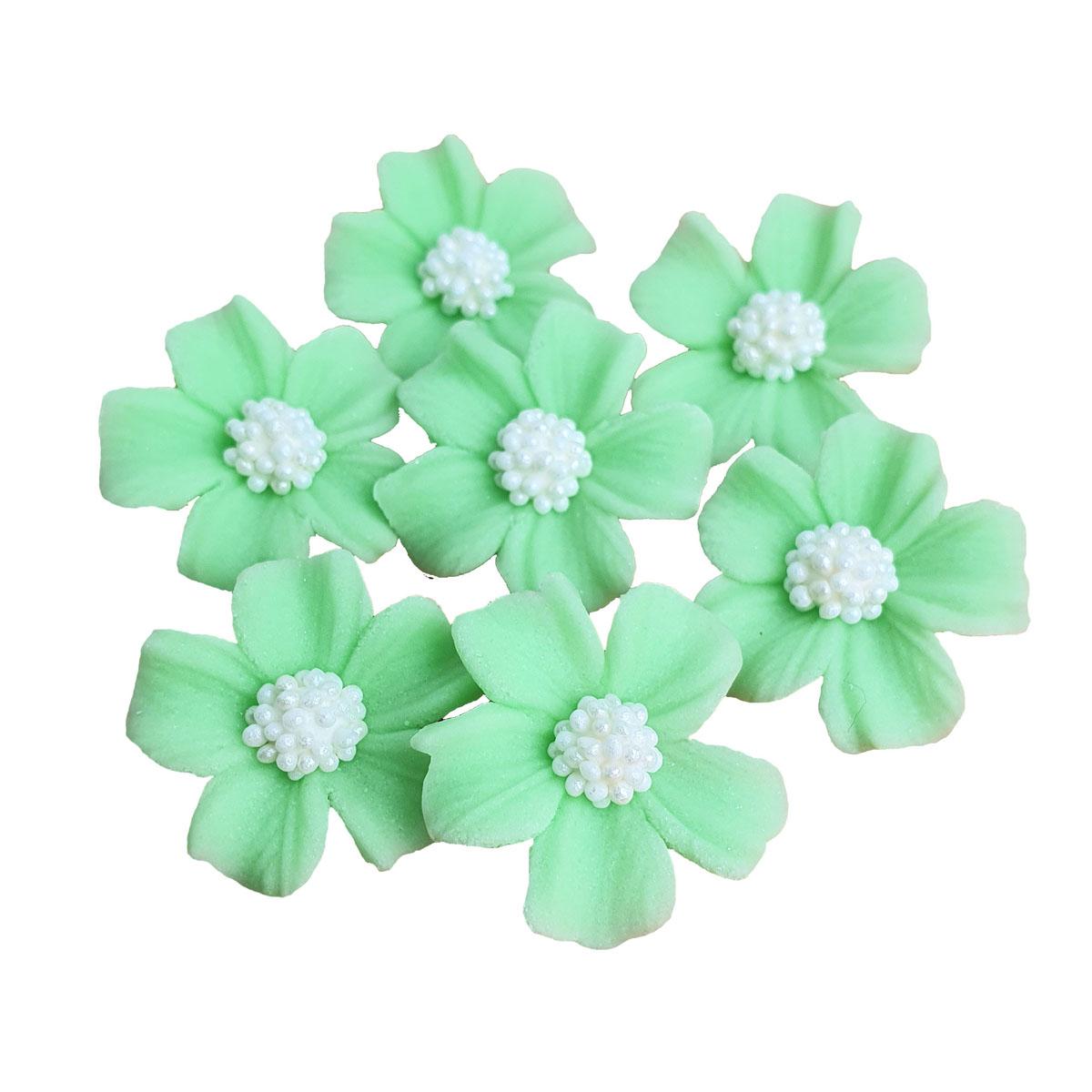 Zuckerblumen Vergissmeinnicht 8 Stück - Pistazie
