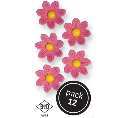 MHD 9/21 PME Zuckerblumen Pink Daisies 12 Stück